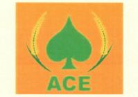 ACE - T1311240J